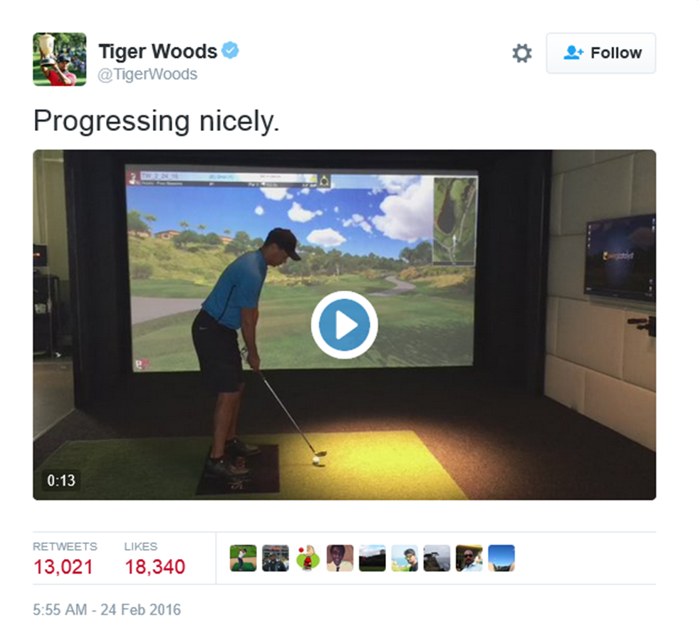 Tiger Woods Video 2